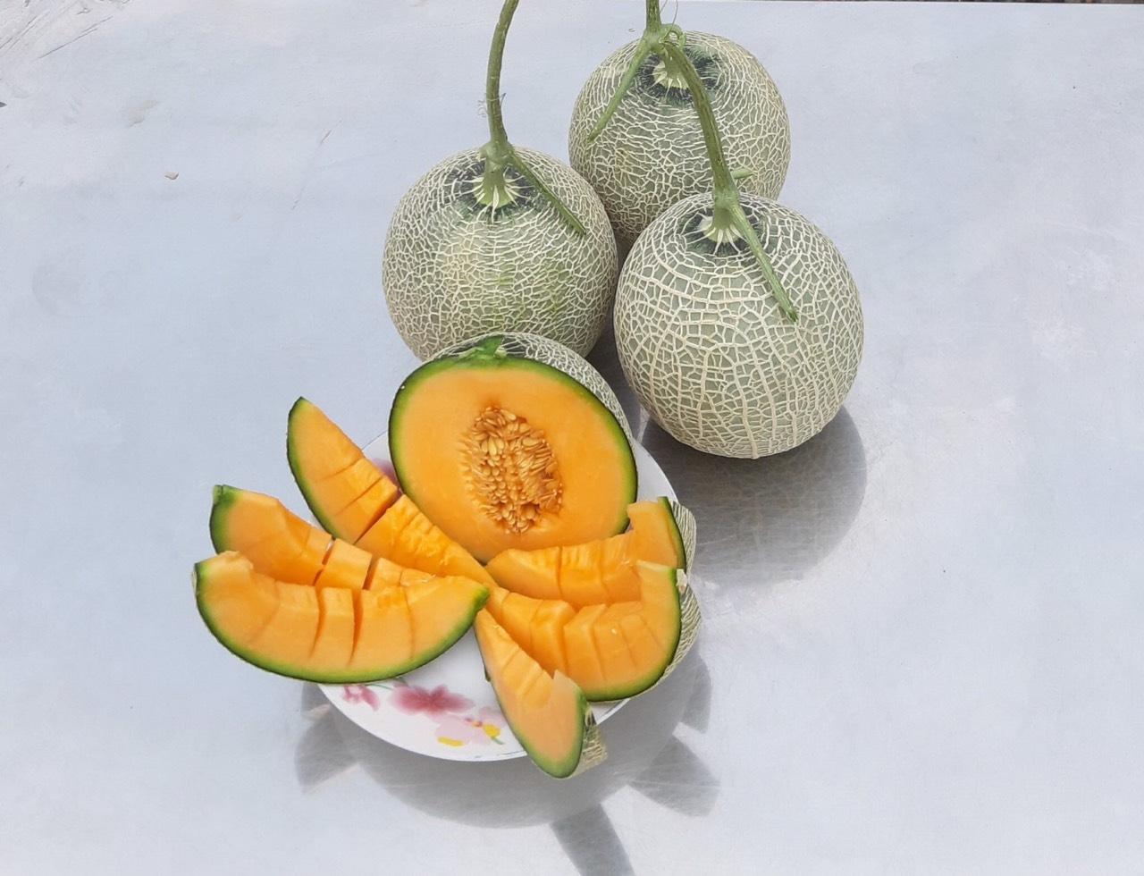 Combo 2 trái dưa lưới - Anh Nông Dân