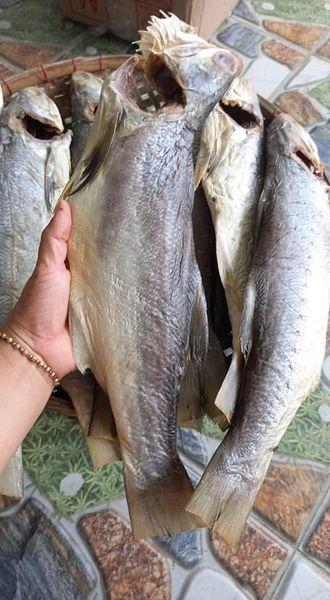 Khô cá chét size lớn