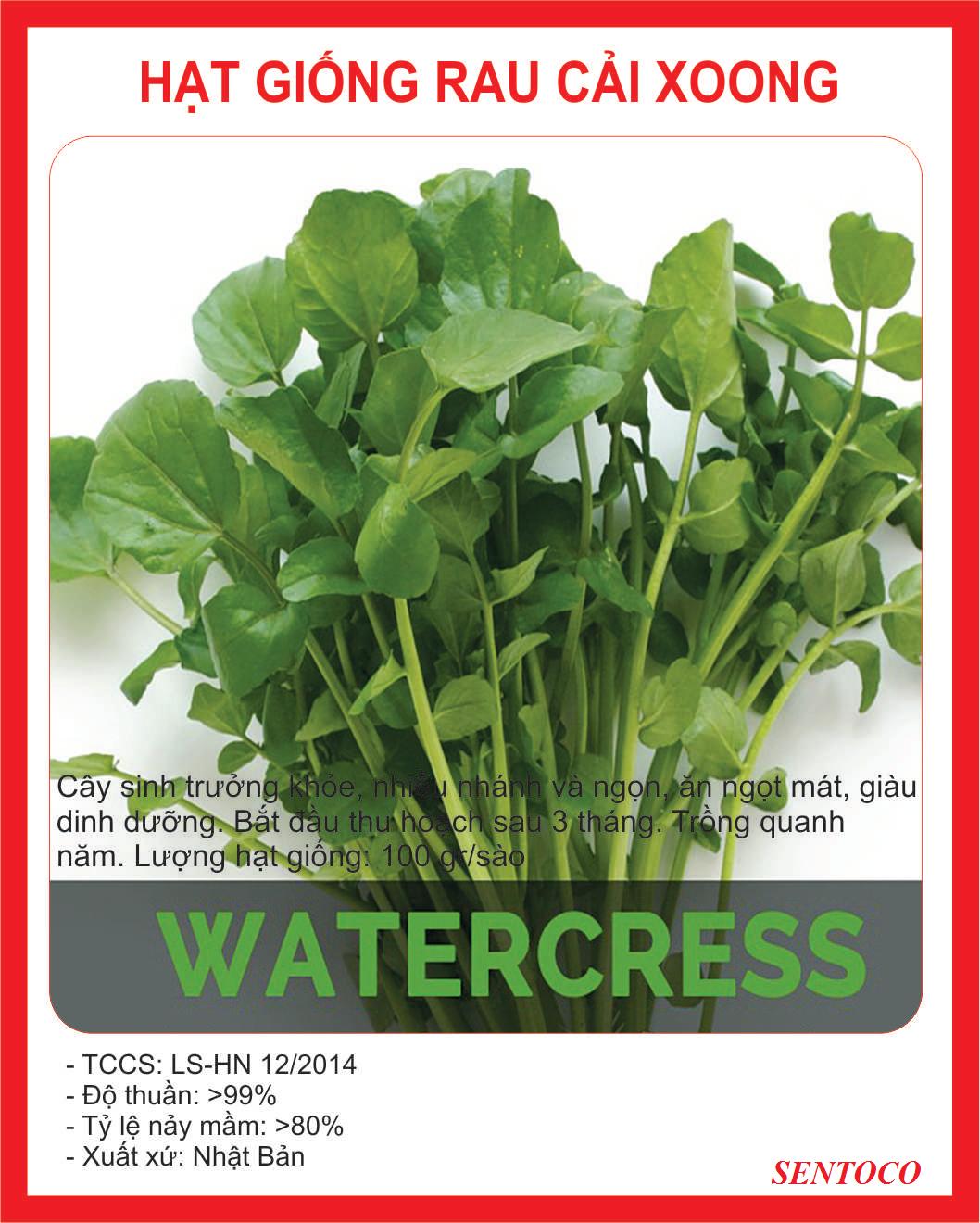 Hạt giống rau cải xoong ngọt Nhật Bản - 0.2gr