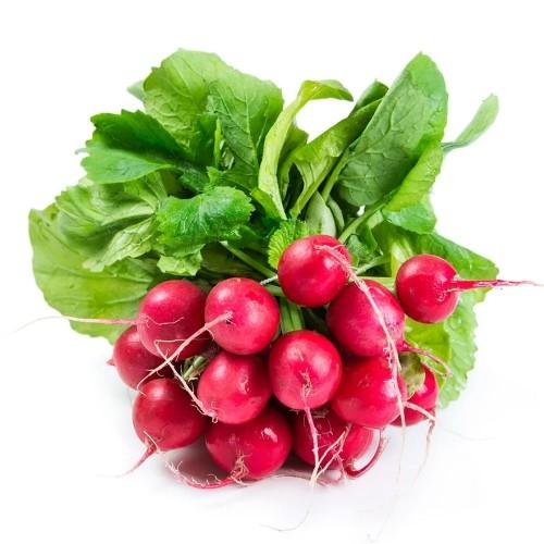 Hạt giống củ cải đỏ tròn cherry nhập khẩu Đài Loan