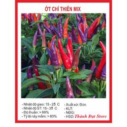 Hạt giống ớt chỉ thiên mix nhiều màu F1- 30 hạt