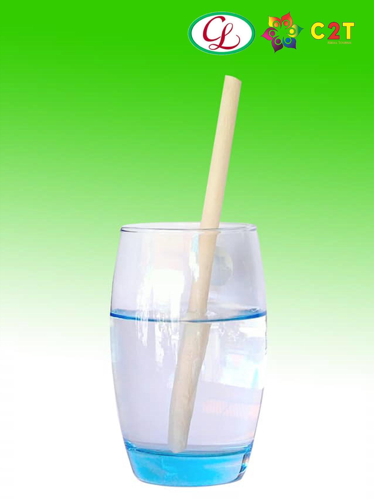 COMBO 2 HỘP ỐNG HÚT LÀM TỪ NƯỚC DỪA (Coconut Straw)
