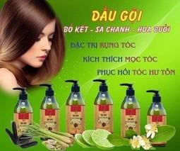 Dầu gội đầu bồ kết - sả chanh Ninh Thuận