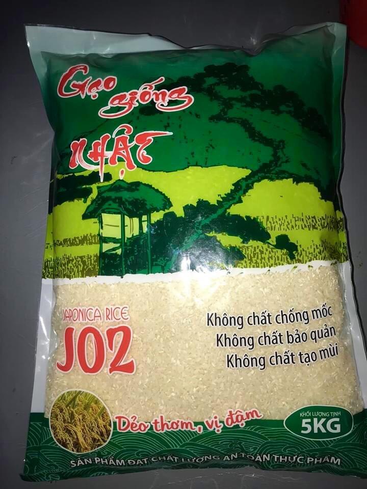 [Phú Thọ] 10kg Gạo Giống Nhật J02