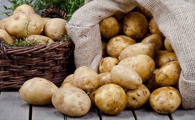 Combo 3kg Khoai tây