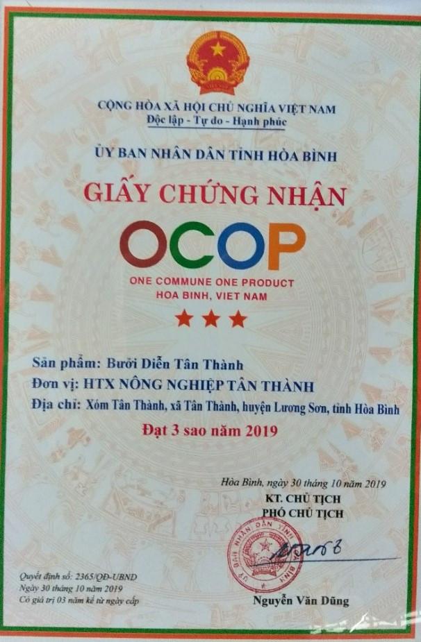 Combo 10 Quả - Bưởi Diễn Tân Thành - Lương Sơn Hoà Bình. Chỉ 300.000đ