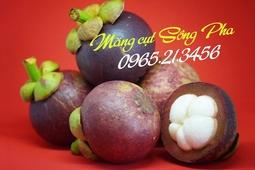 Măng cụt Ninh Thuận
