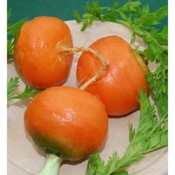 Hạt giống Cà Rốt quả tròn - Cà rốt quả tròn