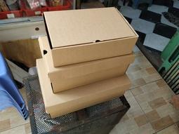Hộp carton đựng giày hút ẩm khử mùi 20x10x7