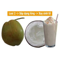 Đặc sản Dừa Sáp Cầu Kè - [Cơm mỏng có nước]