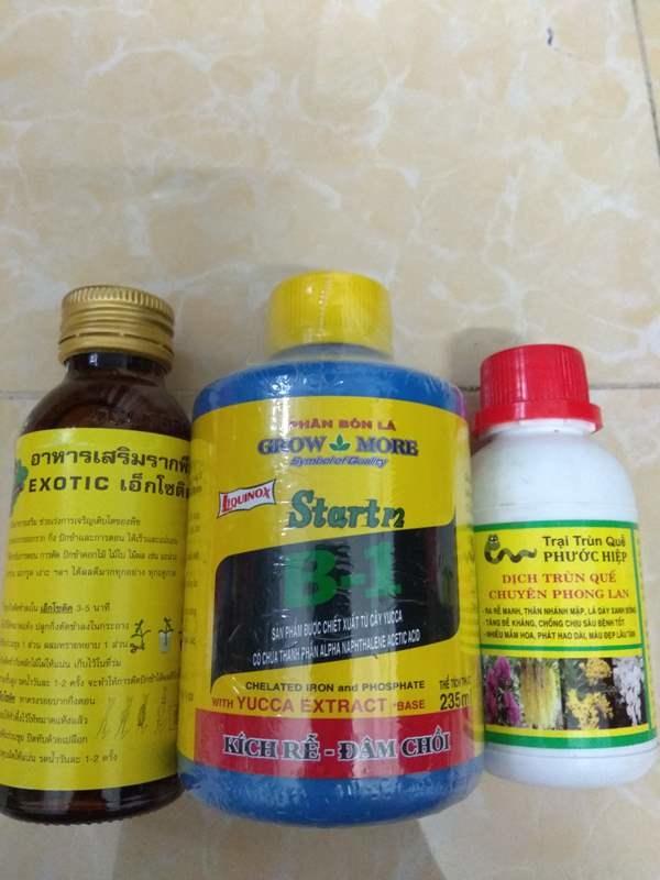 Combo kích rễ dưỡng cây Exotic - B1 Grow more 235ml tặng chai dịch trùn quế chuyên phong lan 105ml