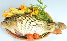 Cá Chép Sông Đà Làm Sạch