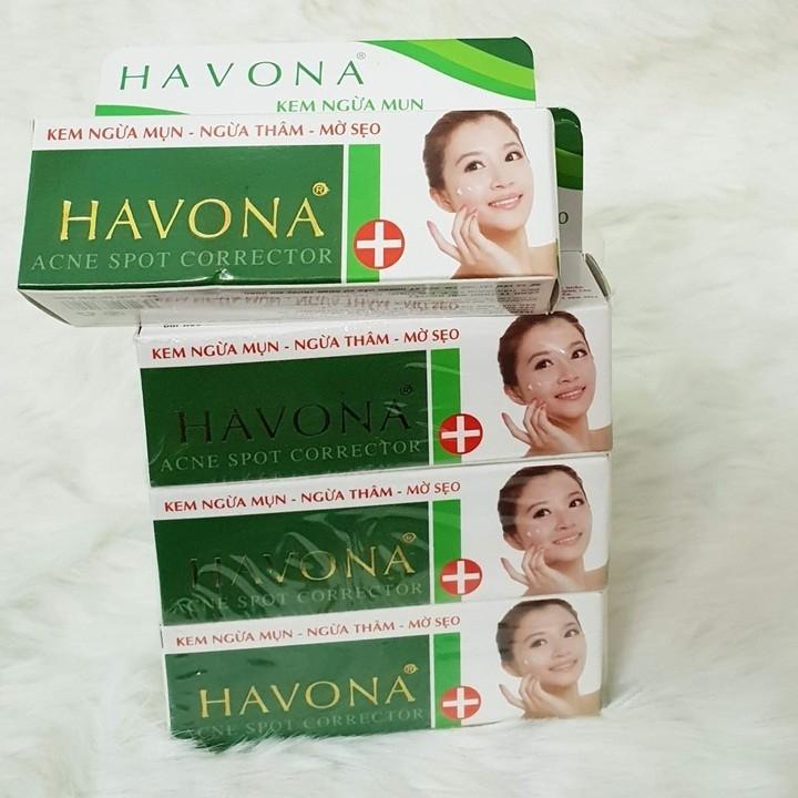 Gel trị mụn, ngừa thâm, mờ sẹo Havona 10g - E19 - E19