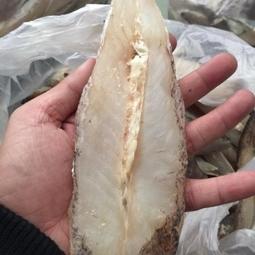 Cá mú 1 nắng- đặc sản nha trang