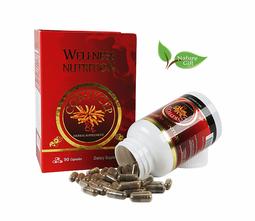 Đông Trùng Hạ Thảo Wellness Nutrition (90 viên/hộp)