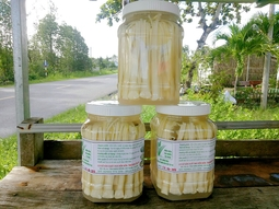 1kg Dưa bồn bồn( chưa bao gồm nước dưa)- Đặc sản Cà Mau