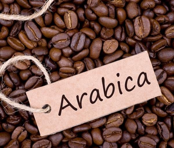 NGUYÊN HẠT DAKMARK  ARABICA CẦU ĐẤT BÌ 500G_ĐẶC SẢN KON TUM