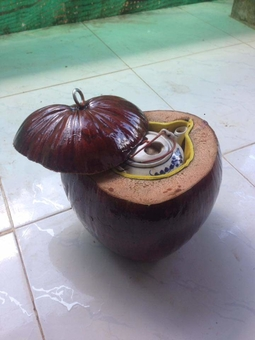 Sản phẩm thủ công mỹ nghệ Bến Tre - Bình giữ nhiệt làm từ trái dừa