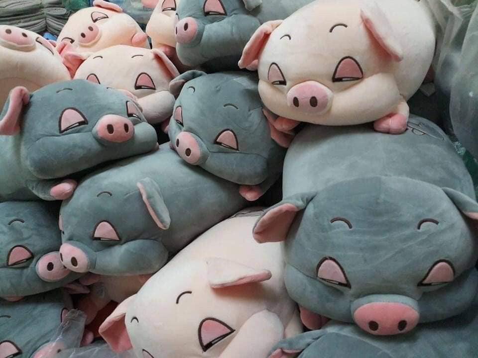 Set chăn gối văn phòng hình lợn con dễ thương - P475126 | Sàn thương mại  điện tử của khách hàng Viettelpost