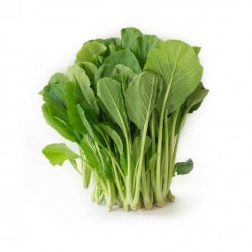Gói 100g hạt giống cải ngọt cao sản - Nanuseeds