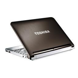 Laptop Toshiba NB200 13in 2G 10 inch Netbook xinh xinh - Laptop Toshiba NB200