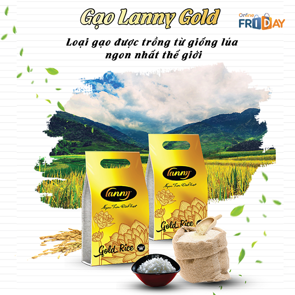 Combo 10KG Gạo Lanny Gold