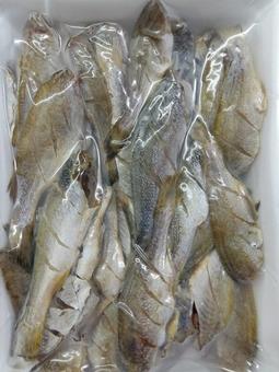 500Gr Khô Cá lù đù (cá đù) nhiều nắng Bạc Liêu Nhà Làm
