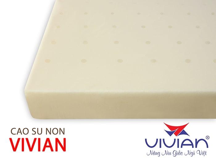 Nệm Cao Su Non VIVIAN Thông Hơi (100cm x 200cm x 10cm) Bọc vải thun lạnh co giản đa chiều có dây kéo