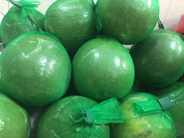 Bưởi da xanh Bến Tre - 2 quả (1.2-1.4kg)