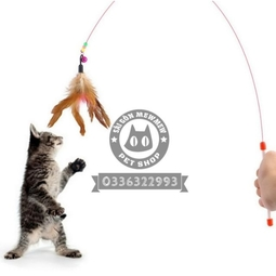 Đồ chơi cần câu dây thép cho mèo