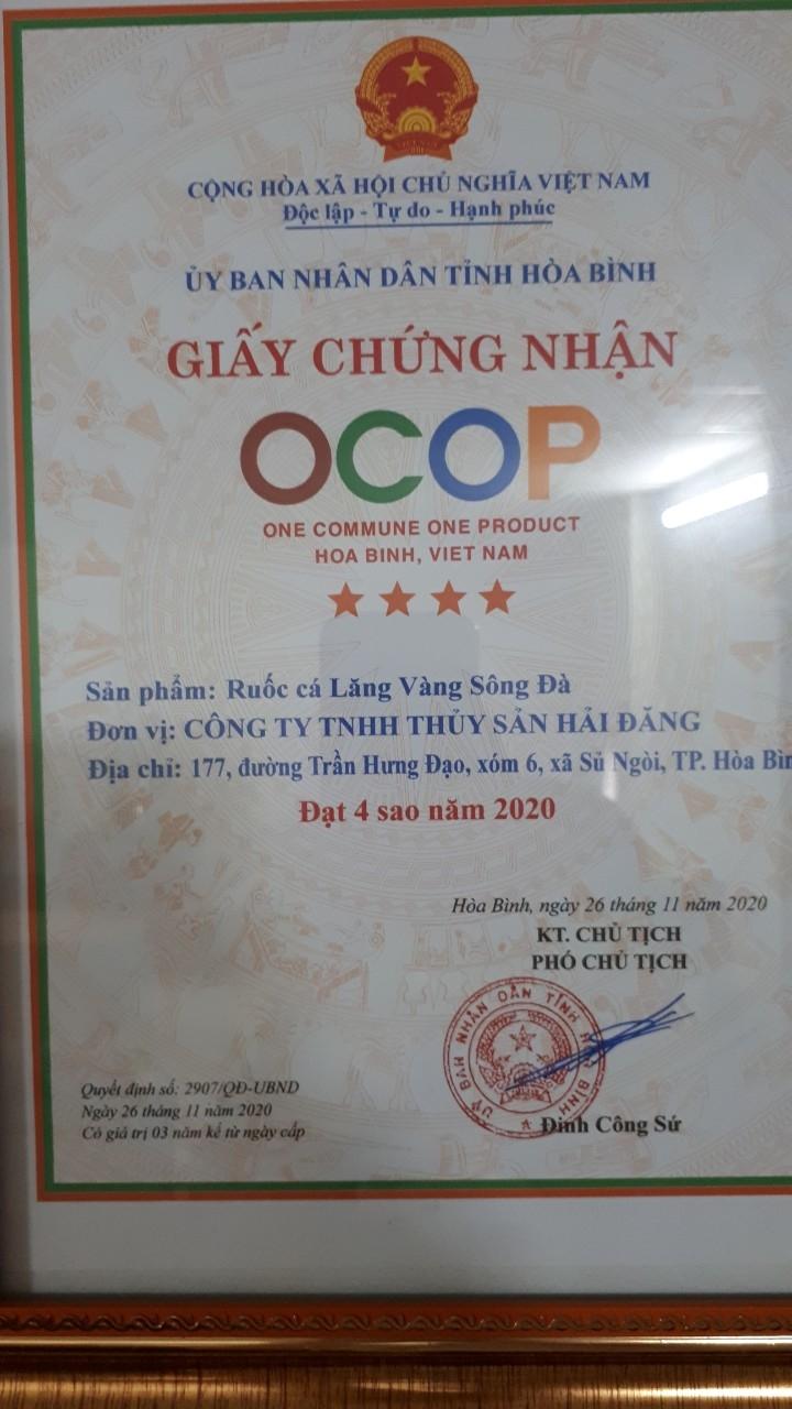 Ruốc Cá Lăng Vàng Sông Đà SP OCOP 4 Sao - Chỉ 180.000Đ/Hũ (100gr)