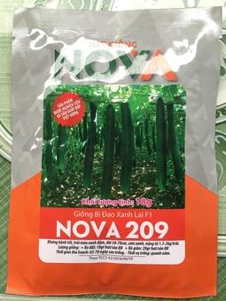 Hạt Giống Bí Nova 209 18g