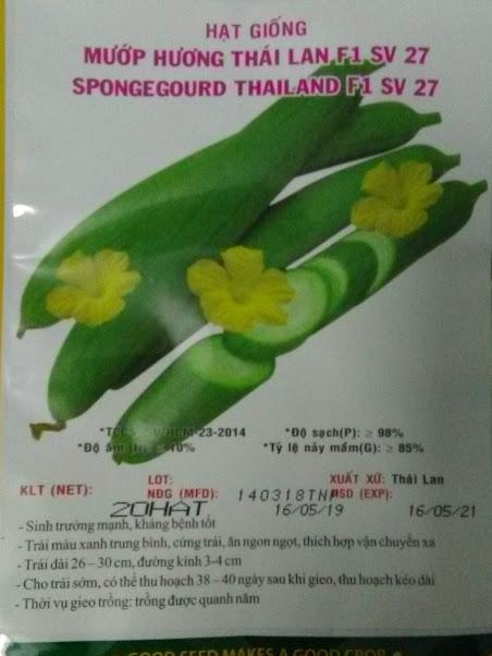 Hạt giống mướp hương Thái lan - gói 20 hạt