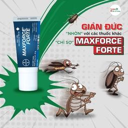 Diệt Gián Dạng Gel Maxforce Forte - Bayer Đức nhập khẩu