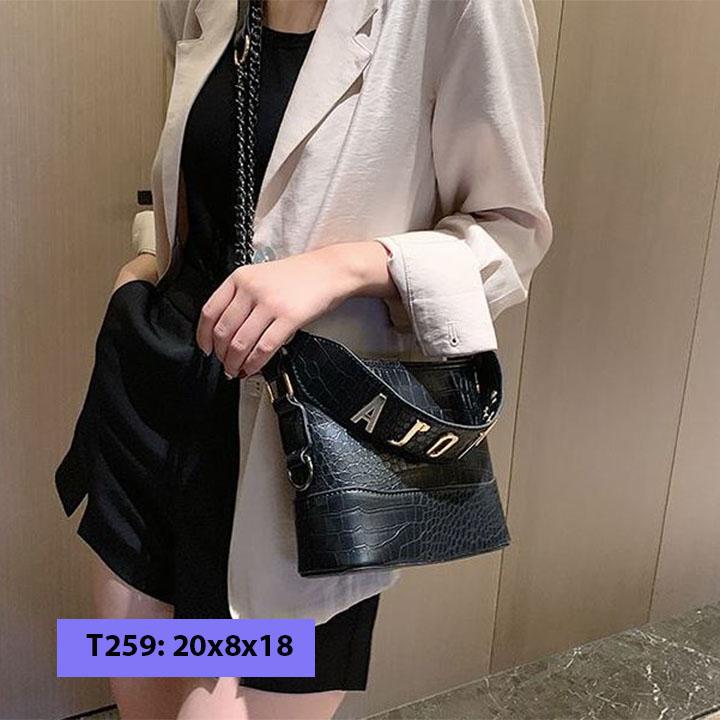 Túi xách đeo chéo nữ 2 dây sang chảnh