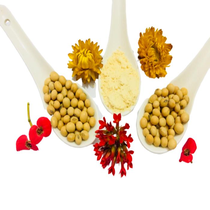 Sữa mầm đậu nành SoyNa không đường 400gr -Combo 02 - Bổ sung nội tiết, làm đẹp da, giảm cân