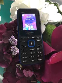 Điện thoại V6317