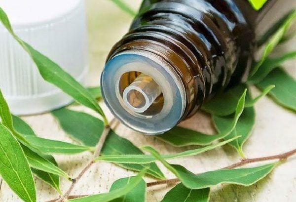 Tinh dầu tràm gió nguyên chất F-care 50ml