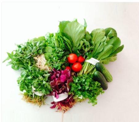 Combo gồm 5 Kg rau củ quả các loại ( Chỉ giao tại thành phố Vũng Tàu)