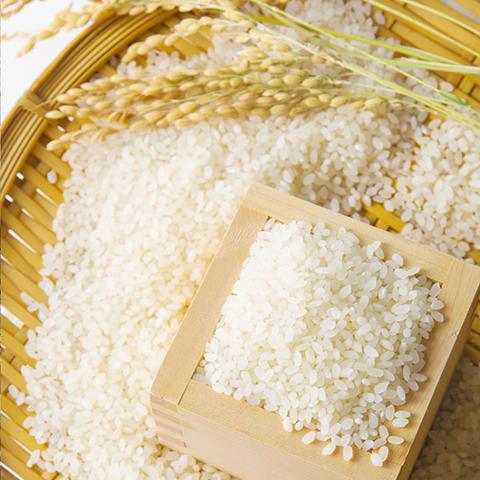 Gạo Dui - P108094 | Sàn thương mại điện tử của khách hàng Viettelpost