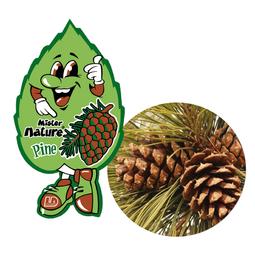 Lá thơm nụ cười may mắn L&D MISTER NATURE Wild Pine