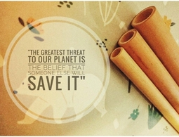 Ống hút tre bảo vệ môi trường